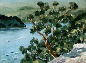 View From MaKay Reserve, NSW. -2019 oil on canvas