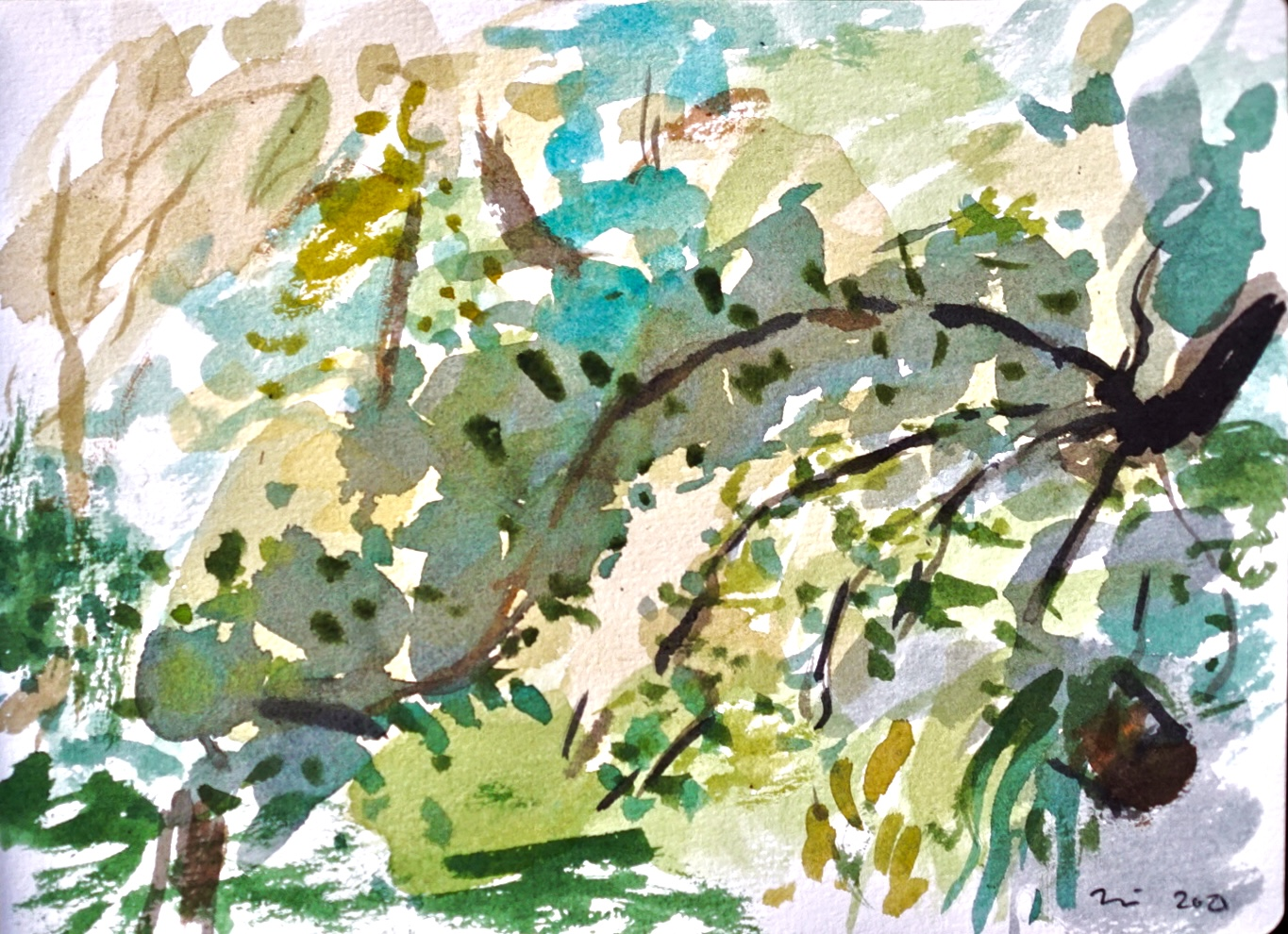 Water Color painting in a Chinese style of Fern Dell park in Los Angeles California